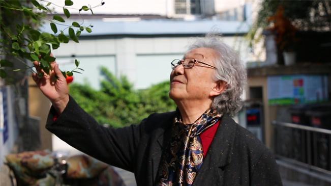 心係古跡,92歲奶奶與南京結緣